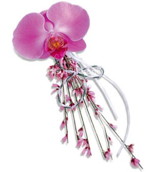 Image of 10032 Opulent Orchid Corsage