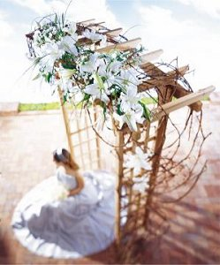 Image of 10049 Wedding Arbor Cluster