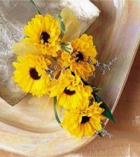 Image of 10125 daisy Chain Corsage