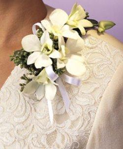 Image of 10671 Dendrobium Corsage