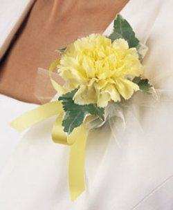Image of 10684 Carnation Corsage