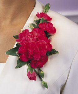 Image of 10688 Carnation Corsage