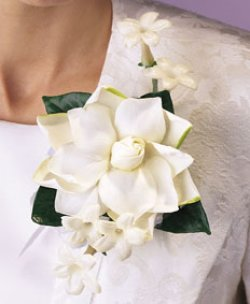 Image of 10693 Gardenia Corsage