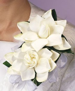 Image of 10694 Gardenia Corsage
