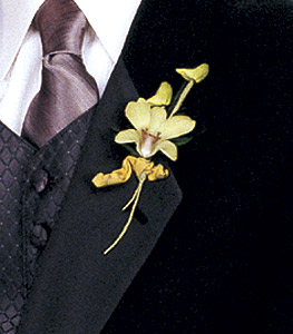Image of 10763 Cats-Eye Green Orchid Boutonniere.
