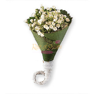 Image of 10819 Rolled Gypsophila Boutonniere.