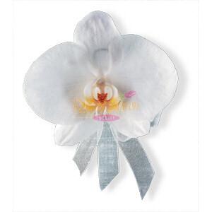 Image of 10832 White Phalaenopsis Corsage.