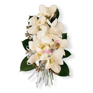 Image of 10836 White Dendrobium Corsage.