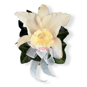 Image of 10837 Japhet Orchid Corsage.