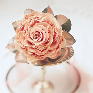 Image of 10222 Bridal Bouquet