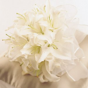 Image of 10149 Bridal Bouquet