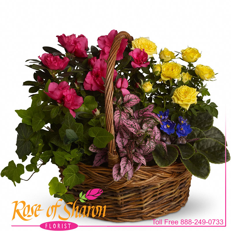 Blooming Garden Basket main product image
