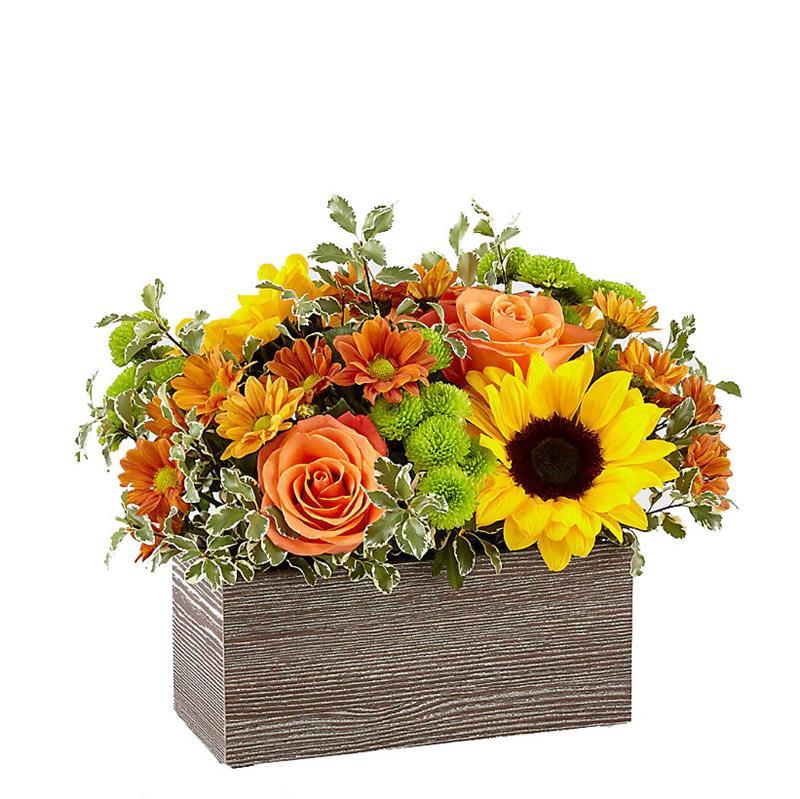3260 Garden Harvest product image