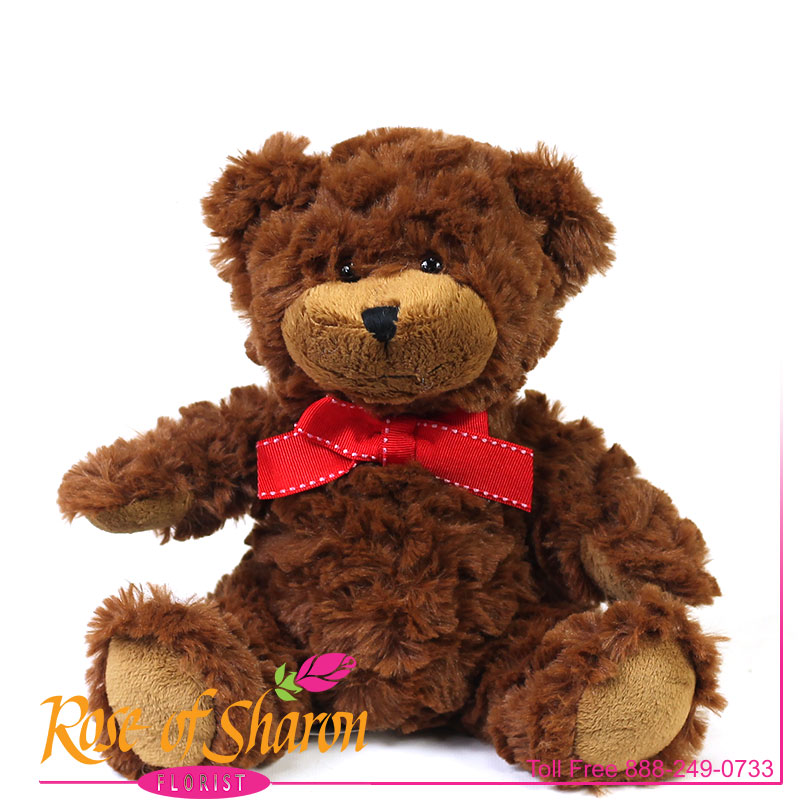 Plush Brown Bear main product image