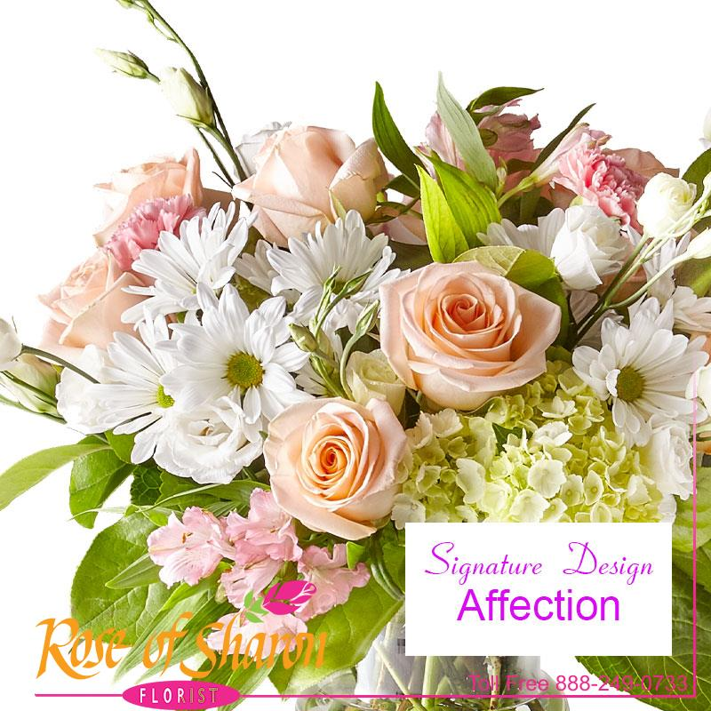 91040 Affection Custom Design product image