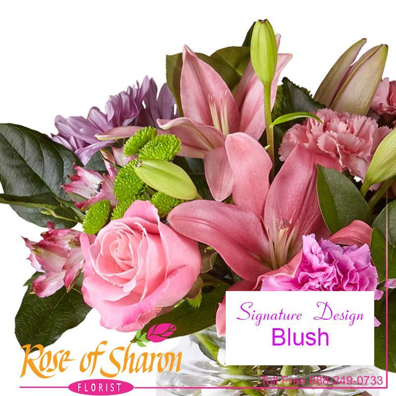 1042 Blush Custom Design product image
