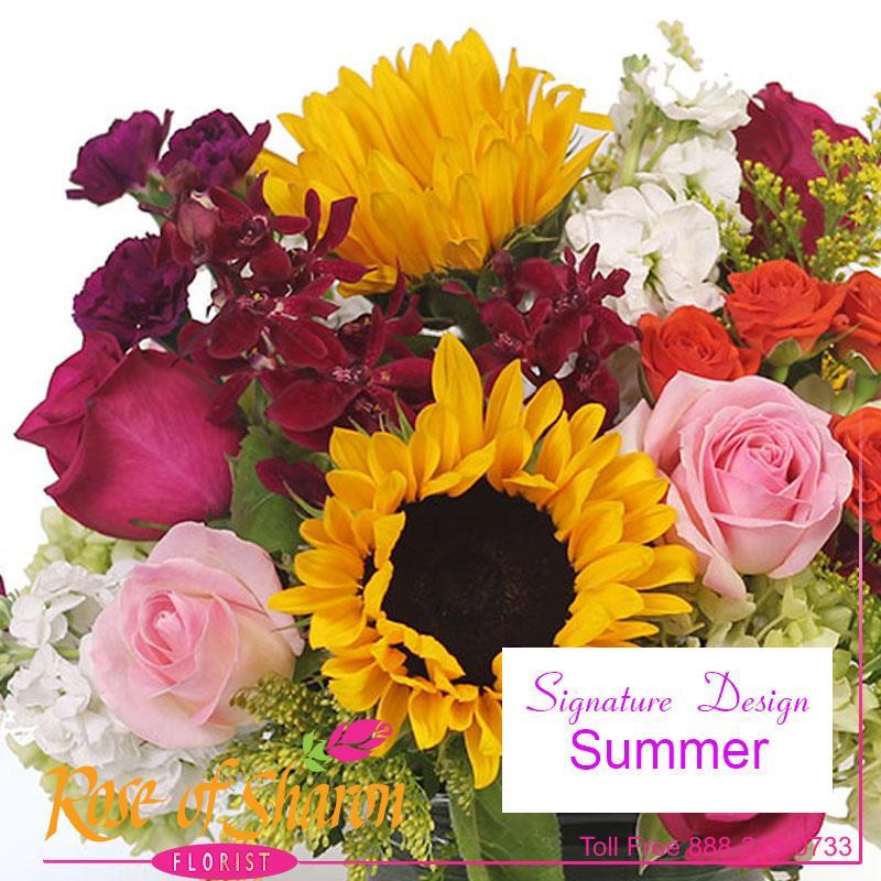 1049 Summer Days Custom Design product image