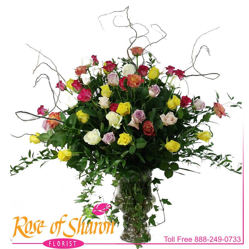 2233 Four Dozen Roses product image