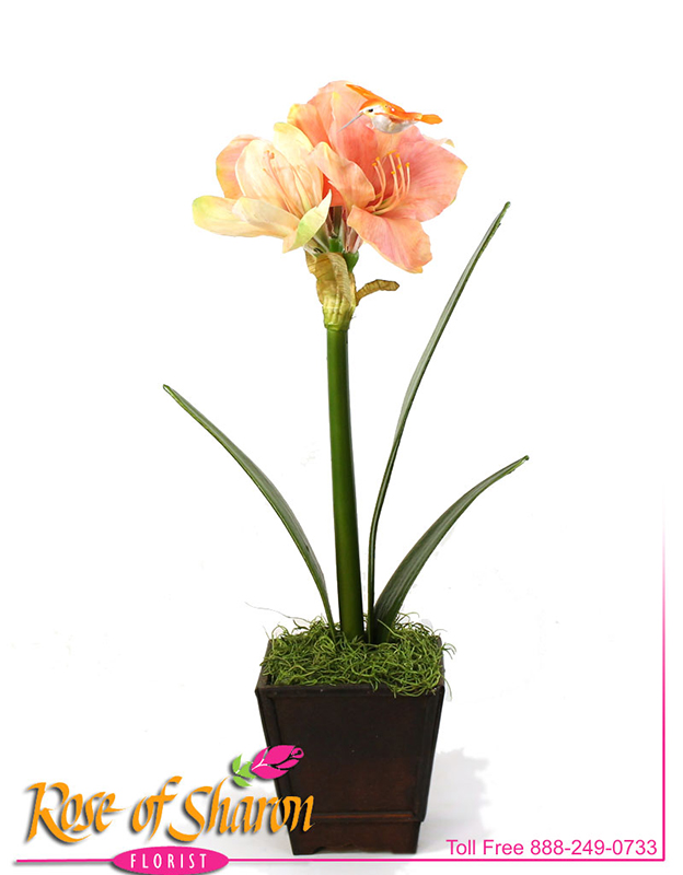 Artificial Amaryllis main product image