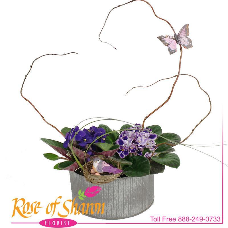 2565 Violet Garden in Norah Bowl product image