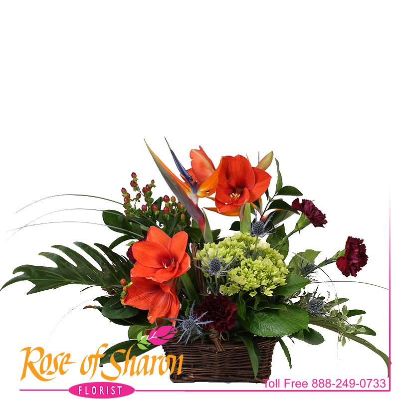2662 Autumn Joy Basket Arrangement product image