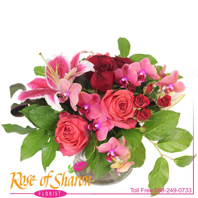2685 Delaney Premium Bouquet Image One