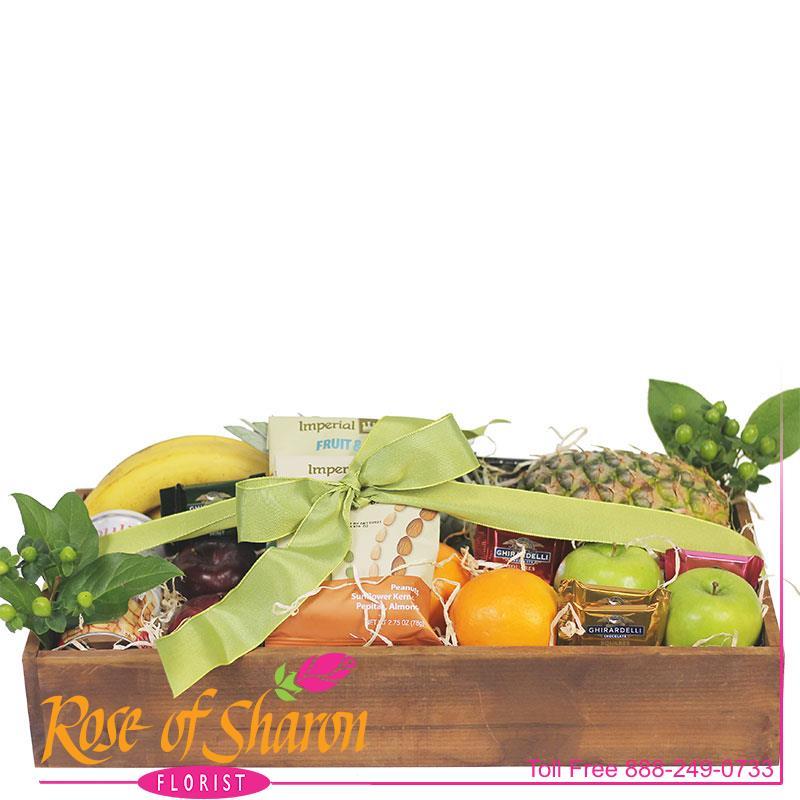 2764 Large Fruit & Food Tray product image