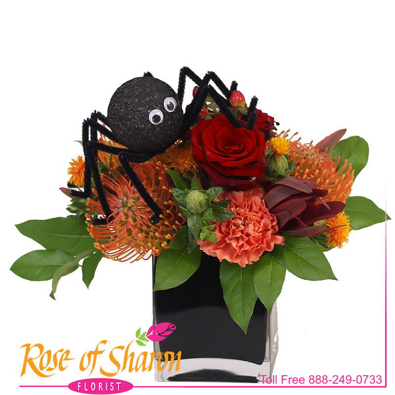 Spooky Sweet main product image