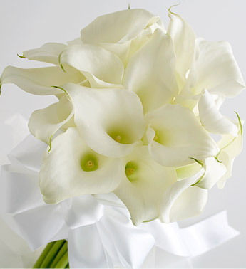 Image of 11520 Premium Calla Lily Wedding Package