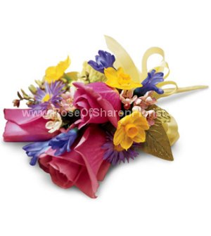 Image of 10045 Effervescent Day Corsage