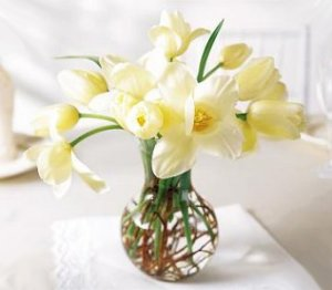 Image of 10061 Radiant Tulips Arrangement
