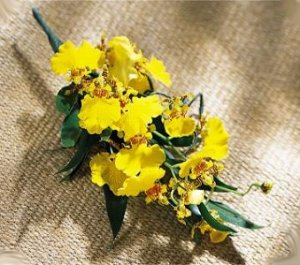 Image of 10095 Rites of Spring Boutonniere