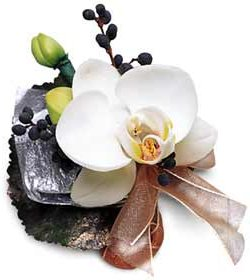 Image of 10116 Orchid Boutonniere