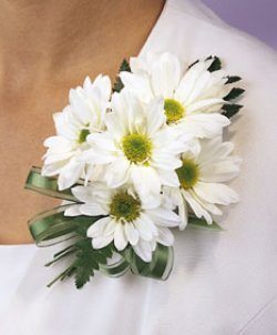 Image of 10689 Daisy Corsage