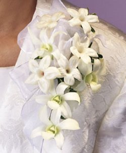 Image of 10695 Stephanotis Corsage