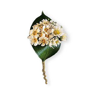 Tiny Blossoms Boutonniere