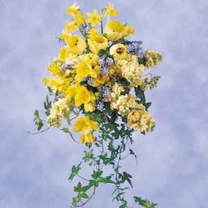 Image of 10162 Bridal Bouquet