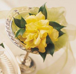Image of 10269 Bridal Bouquet